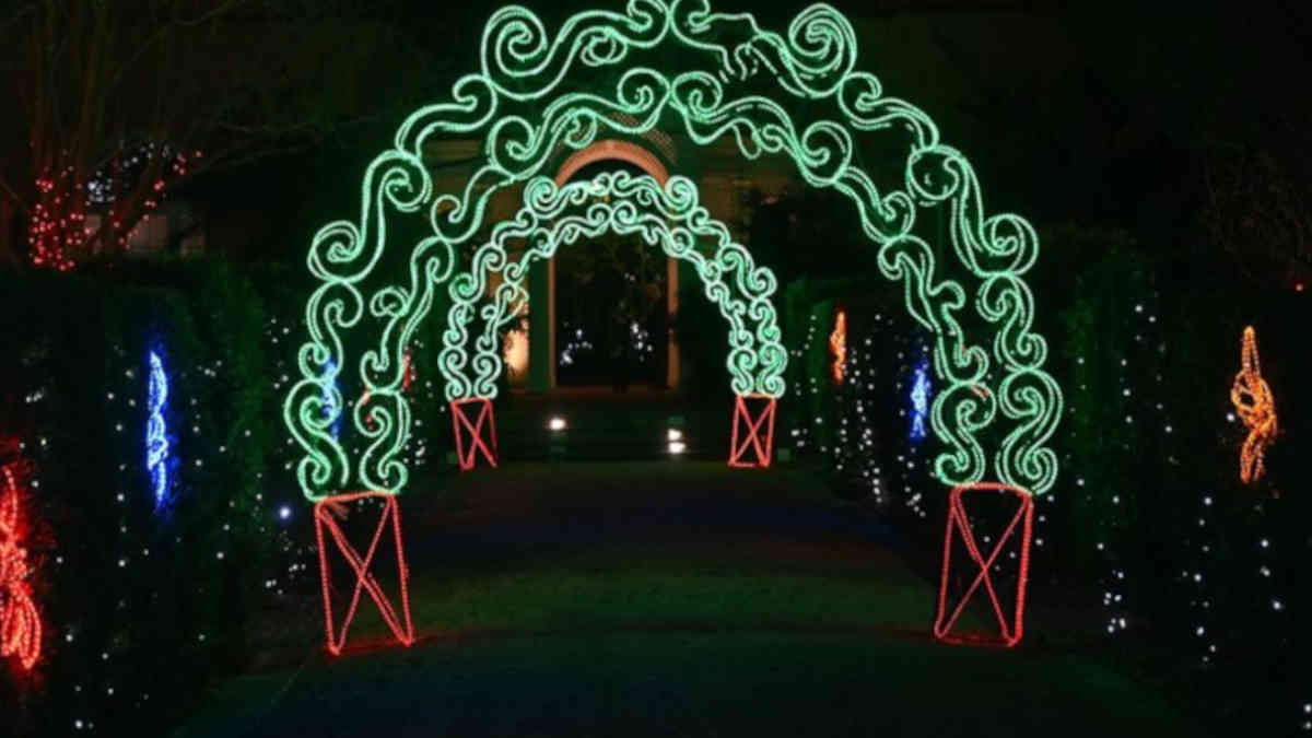 Celebration in the Oaks - Lighted Tunnel
