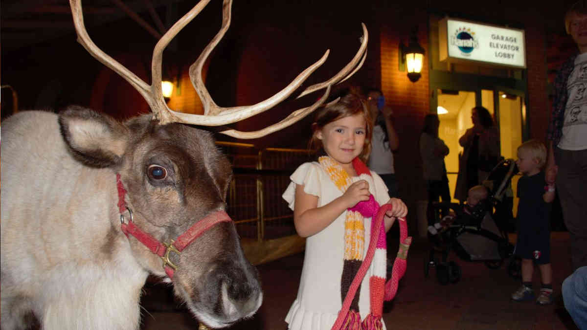 Miracle on Fulton Street Reindeer with Girl New Orleans Local