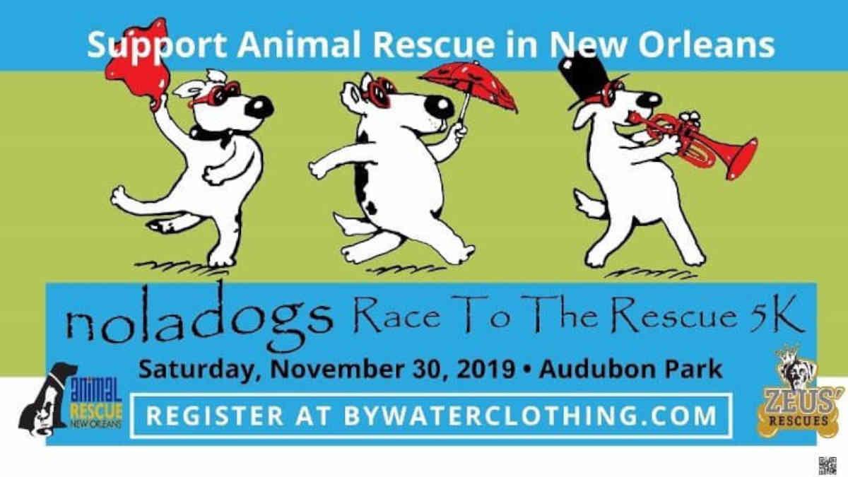 NOLA Dog Race