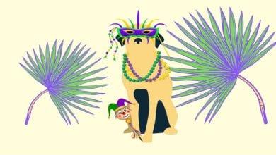 Mardi Paw