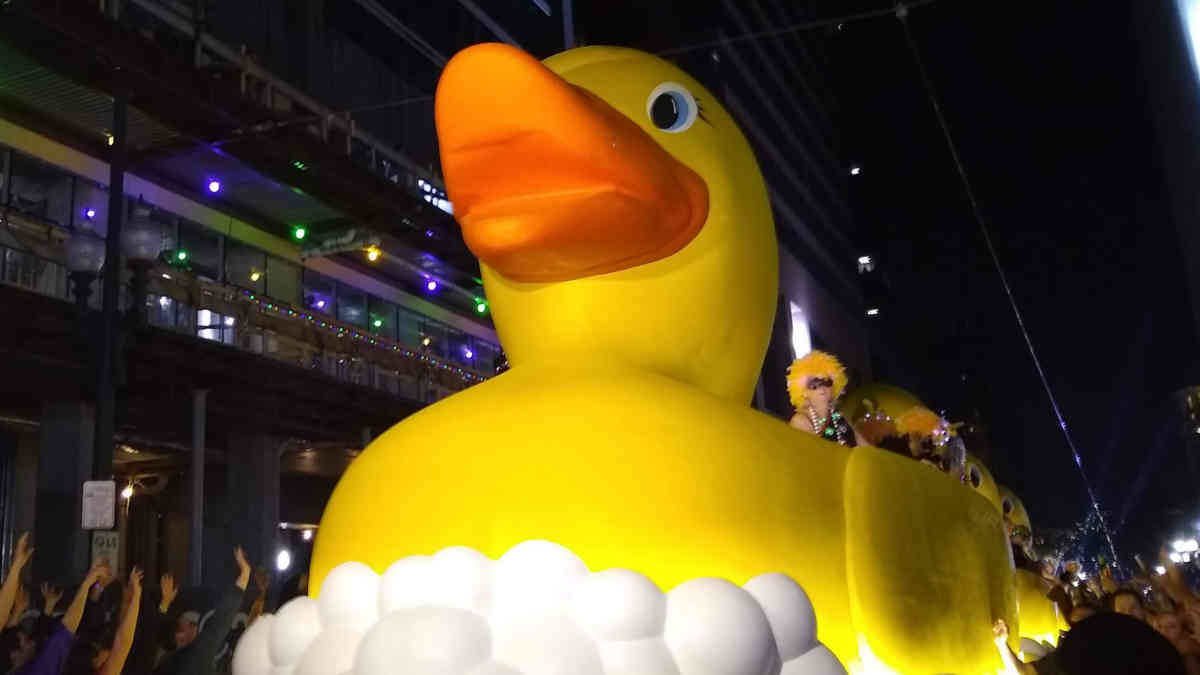Muses Duck Float | New Orleans Local