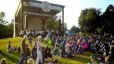 Photo of Swing in the Park & Symphony Fun Run