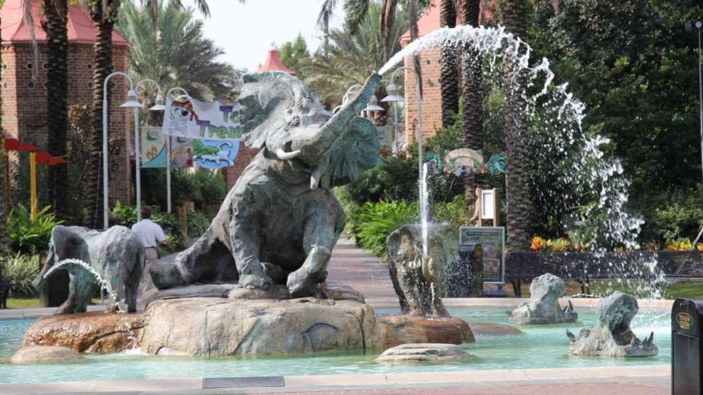 Audubon Zoo, Lions