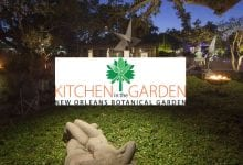 Photo of Picnic Time: New Orleans Botanical Gardens