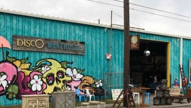 Photo of Backyard Artist Pop-Up at Disco Warehouse