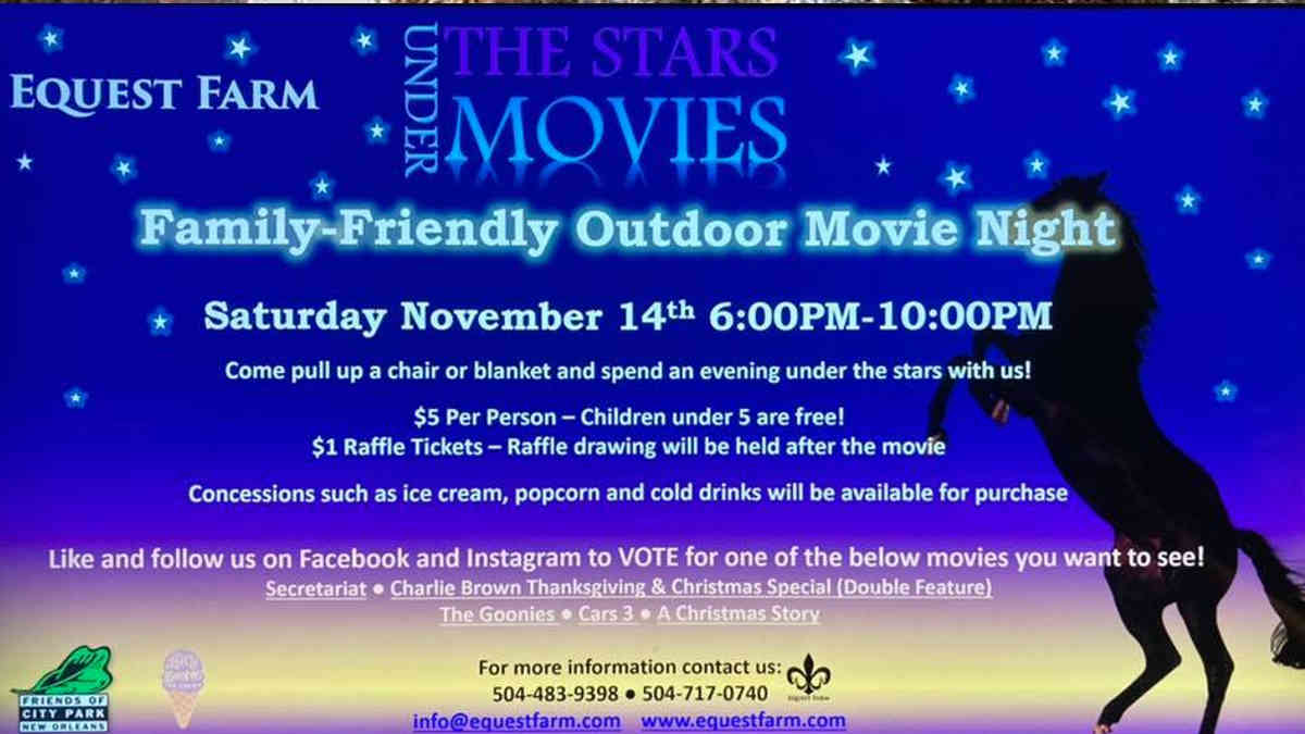 Movies Under the Stars Movie Night