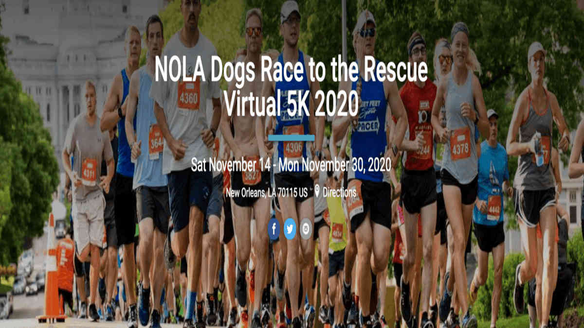 NOLA Dogs Race to the Rescue 5K