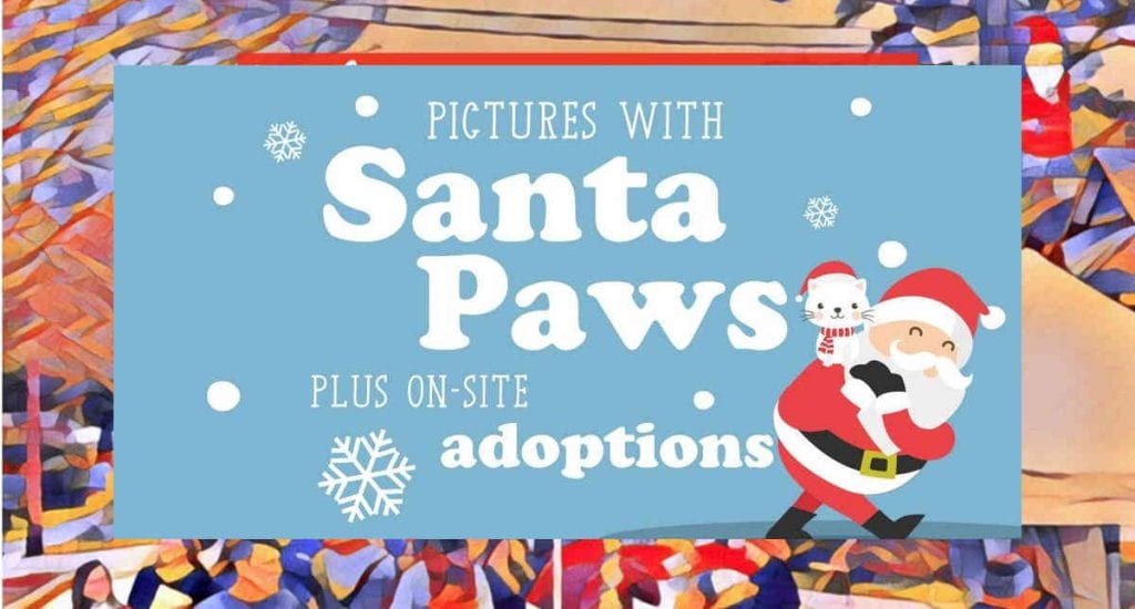 Pictures with Santa Paws at Christmas Past Market