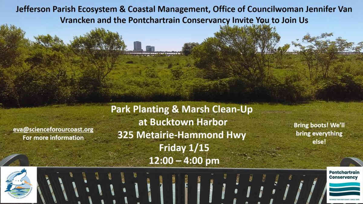 Park Planting & Marsh Clean-Up at Bucktown Harbor