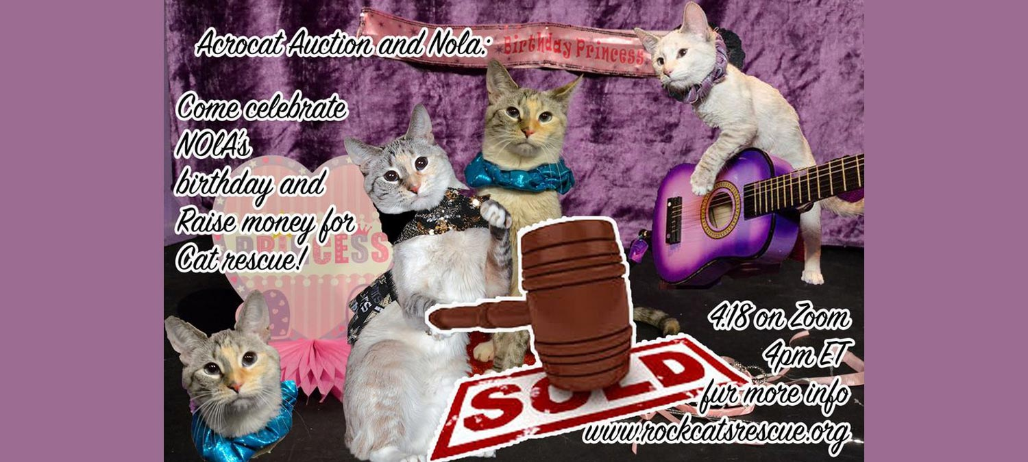 2nd Annual Acro-cats Auction